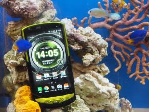 世界初となる海で使えるスマートフォン、TORQUE。耐水性ではなく耐海水性なので、スキューバなどでも使える。