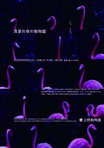 真夏の夜の動物園①