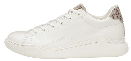 ALL STAR COUPE COURBE POINTPYTHON OX