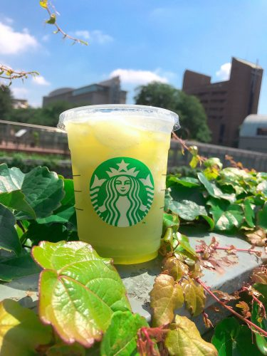 スターバックスコーヒー ティバーナフローズン ティー 香る煎茶 × グリーン アップル
