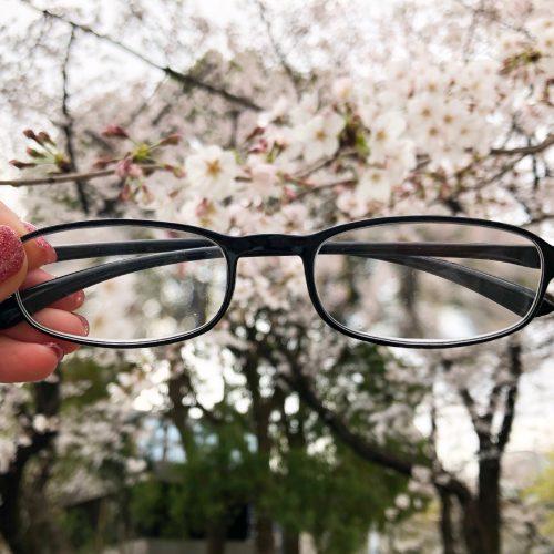 ルーペメガネをお花見に携行してみたら大活躍だった!【MonoMaster5月号特別付録】