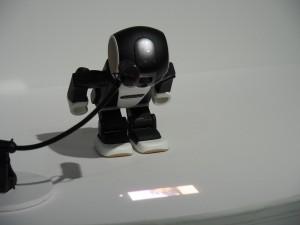 おでこにプロジェクターが仕込まれており、撮影した写真などを投影することができる。